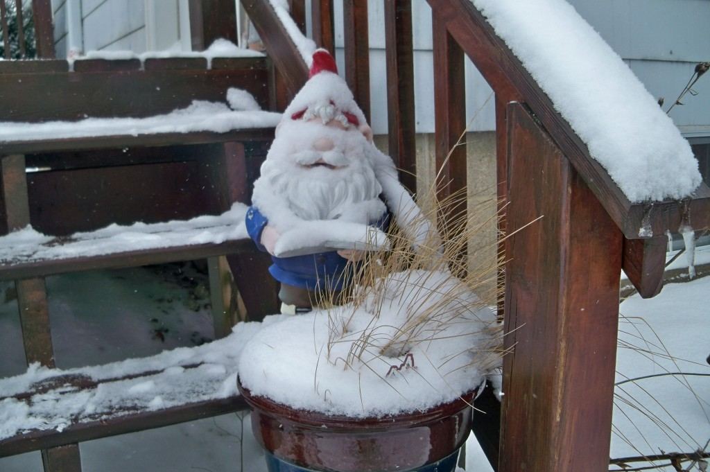 garden gnome winter