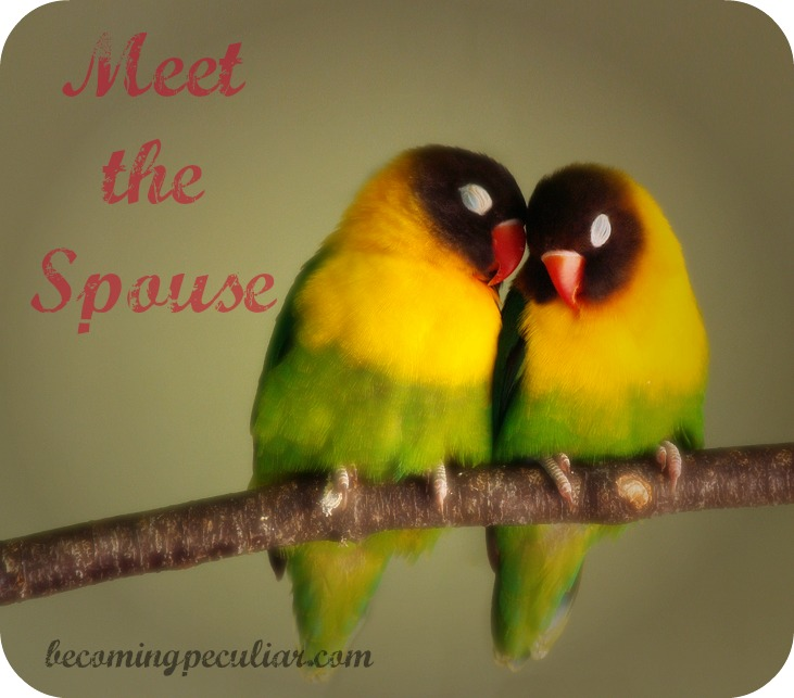 meet the spouse