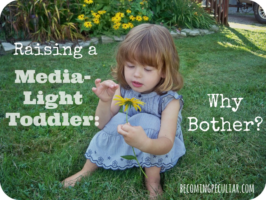 Raising a toddler in a low-media home