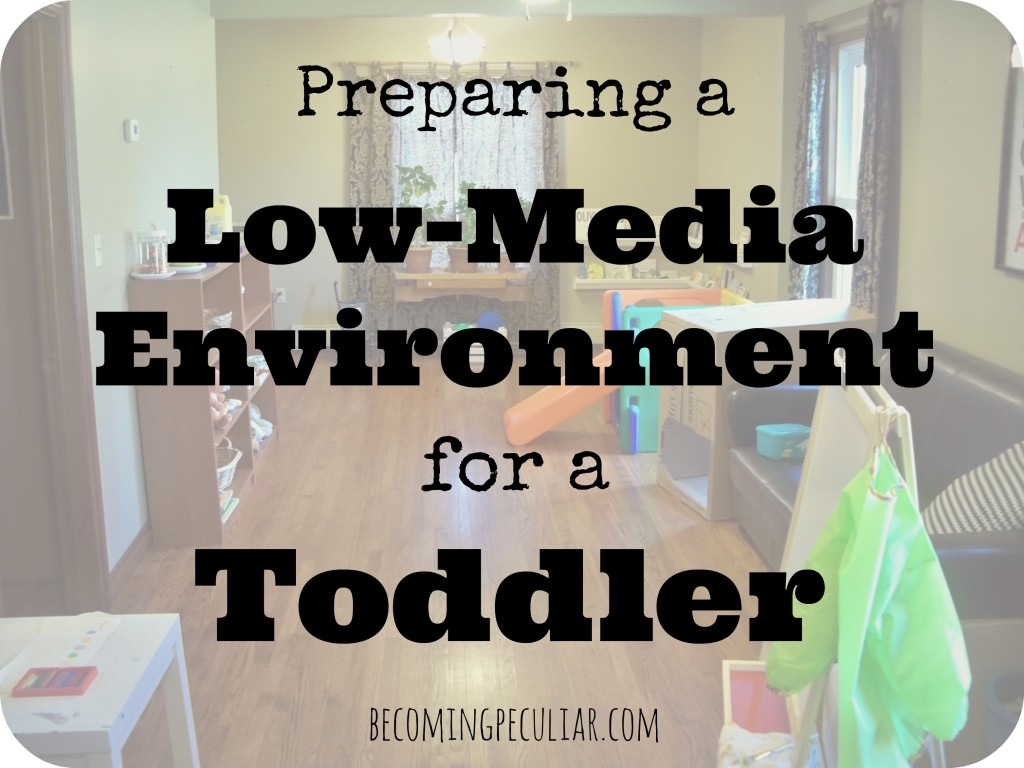 Some tips for preparing a low-media environment for a toddler
