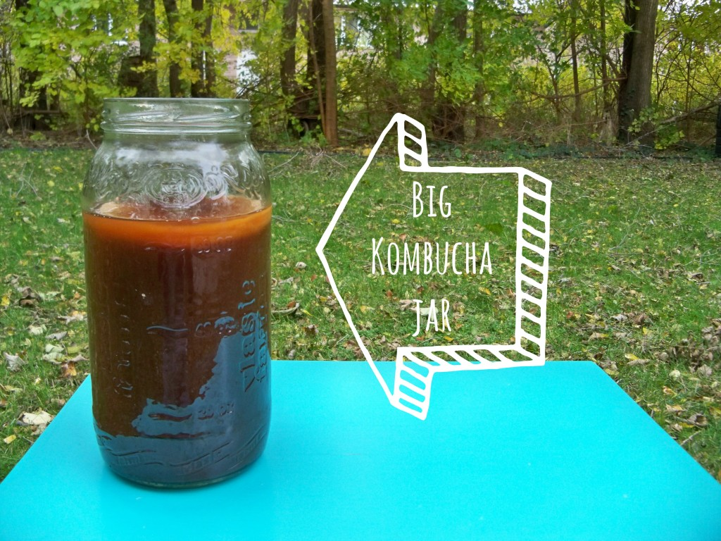big kombucha jar