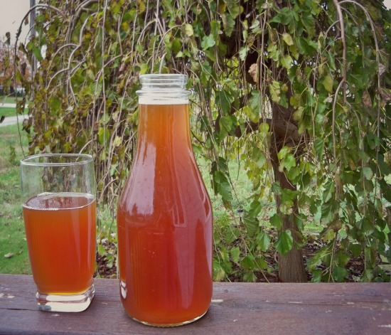 finished kombucha