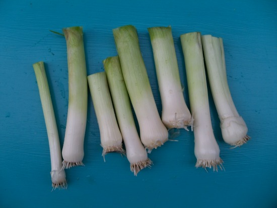 leeks on table