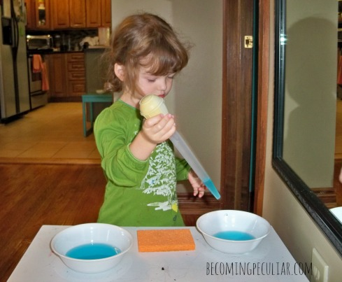 Transferring with a baster:14  Montessori activities for a two-year-old