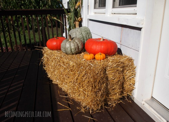 celebrating the autumnal equinox - decorating the threshold with straw and pumpkins