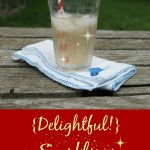 Delightful Sparkling Apple Cider Vinegar Water2