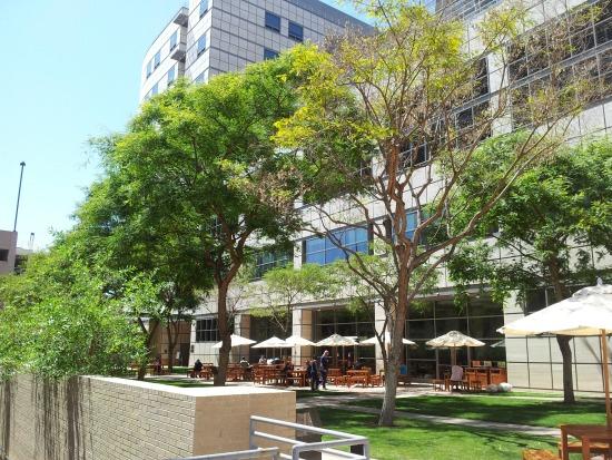 UCLA dining