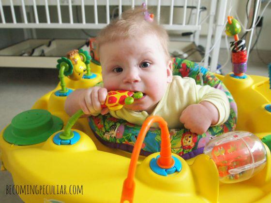 Felix eight months