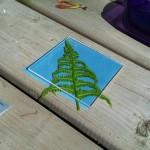 making sunprints: fern 1