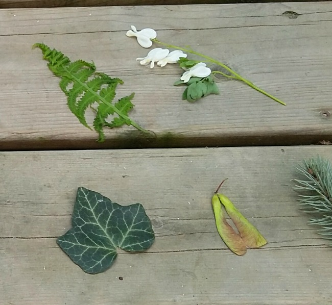 nature items
