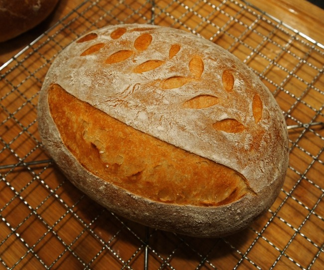 basic sourdough boule recipe