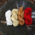 dyeing wool with plants