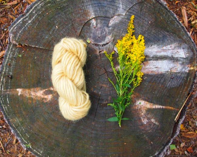 natural goldenrod dye